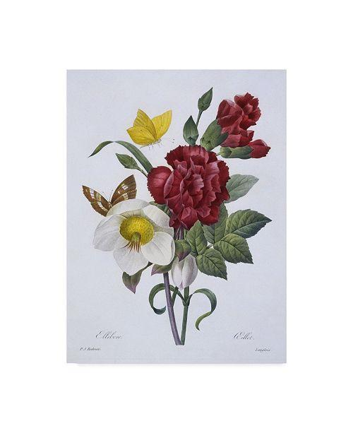 "Trademark Global Pierre-Joseph Redoute 'Ellebore et Oeillet' Canvas Art - 18"" x 24"""