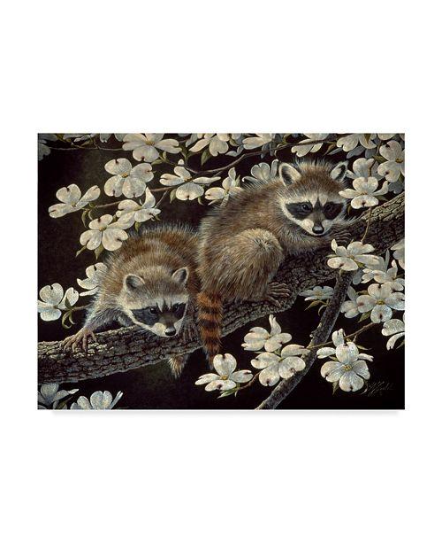 """Trademark Global Wilhelm Goebel 'Young Raccoons' Canvas Art - 18"""" x 24"""""""