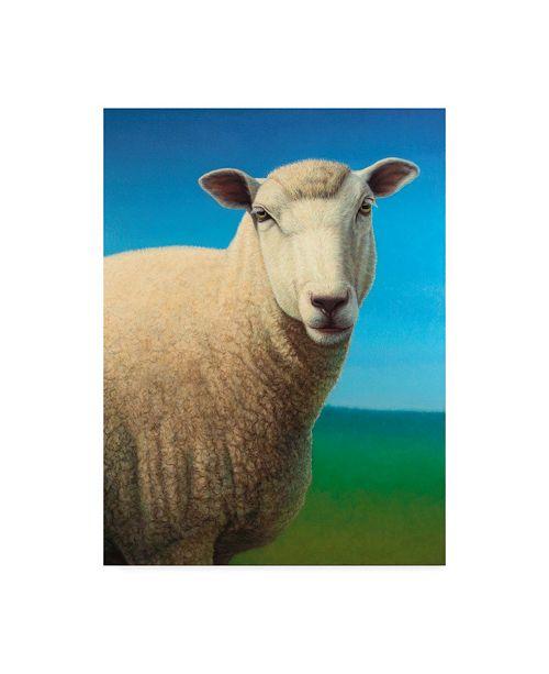 "Trademark Global James W. Johnson 'Sheep' Canvas Art - 24"" x 32"""