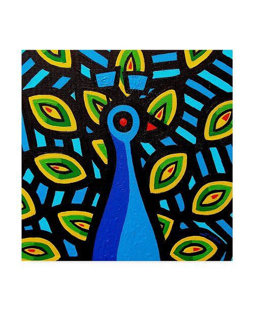 "Trademark Global John Nolan 'Peacock Geo 1' Canvas Art - 24"" x 24"""