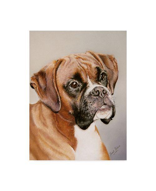 "Trademark Global Janet Pidoux 'Boxer Gray' Canvas Art - 14"" x 19"""