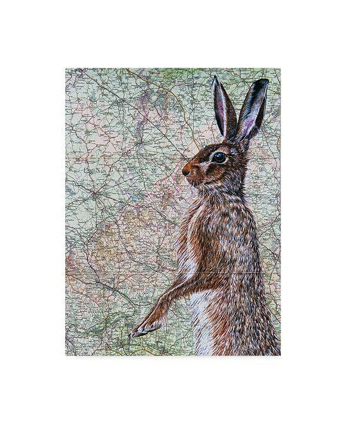 "Trademark Global Jane Wilson 'March Hare' Canvas Art - 24"" x 32"""