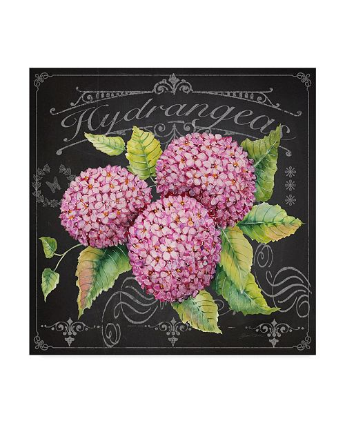 "Trademark Global Jean Plout 'Hydrangeas 4' Canvas Art - 24"" x 24"""
