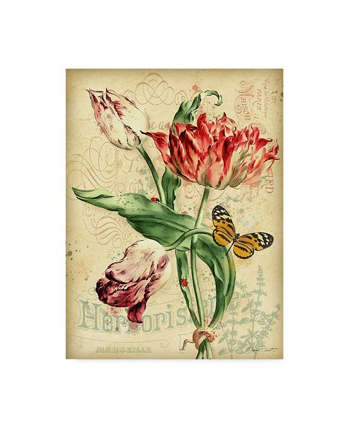 """Trademark Global Jean Plout 'French Florals 2' Canvas Art - 14"""" x 19"""""""