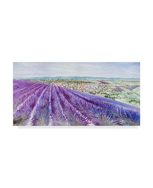 "Trademark Global Li Bo 'Lavender 2' Canvas Art - 24"" x 12"""