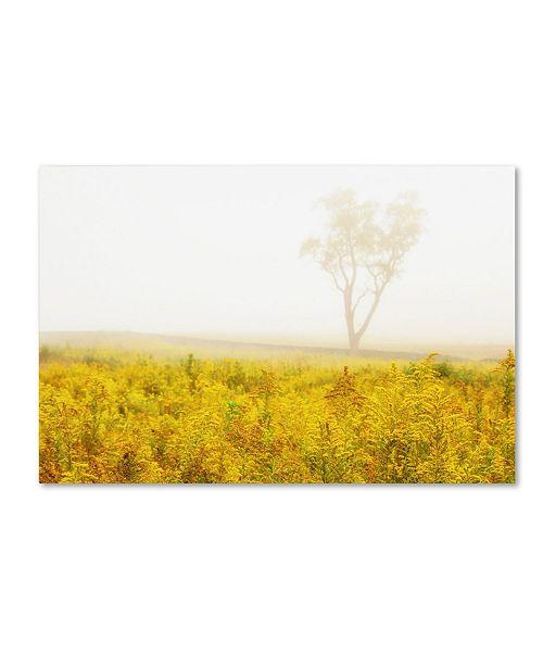 "Trademark Global PIPA Fine Art 'Dreams of Goldenrod and Fog' Canvas Art - 30"" x 47"""