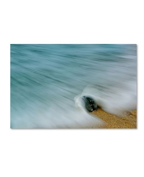 "Trademark Global PIPA Fine Art 'Whelk Seashell and Misty Wave' Canvas Art - 22"" x 32"""