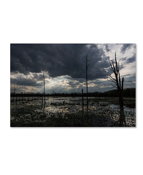 "Trademark Global Kurt Shaffer 'Ohio Wetlands' Canvas Art - 30"" x 47"""