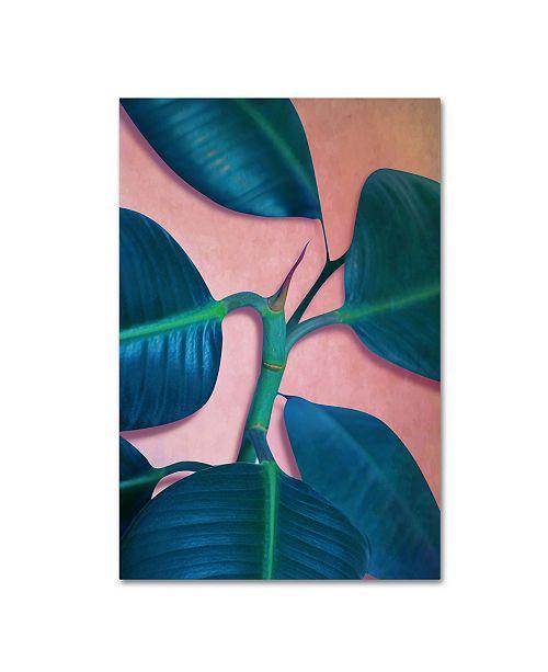 """Trademark Global Mark Ashkenazi 'Ficus Elastica' Canvas Art - 30"""" x 47"""""""