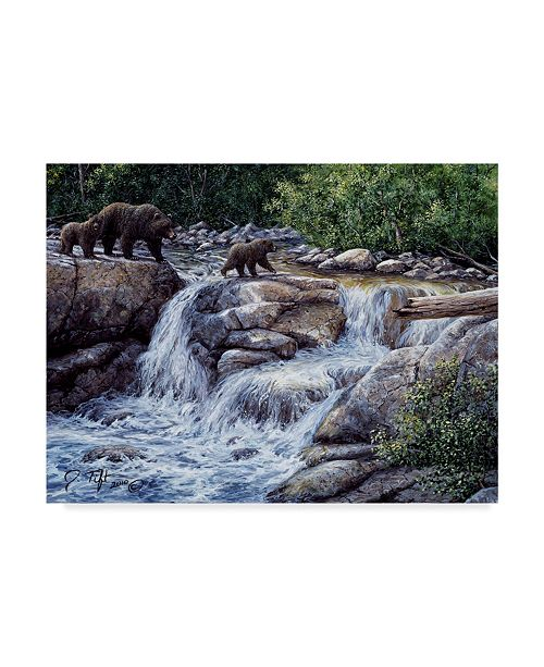 """Trademark Global Jeff Tift 'Entiat Falls Grizzly Family' Canvas Art - 24"""" x 32"""""""