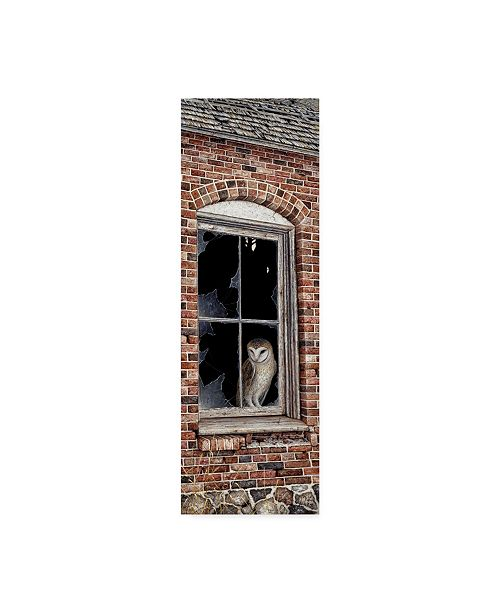 """Trademark Global Jeff Tift 'The Look Out' Canvas Art - 6"""" x 19"""""""
