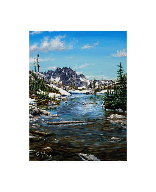 "Trademark Global Jeff Tift 'Tarn Painting' Canvas Art - 35"" x 47"""
