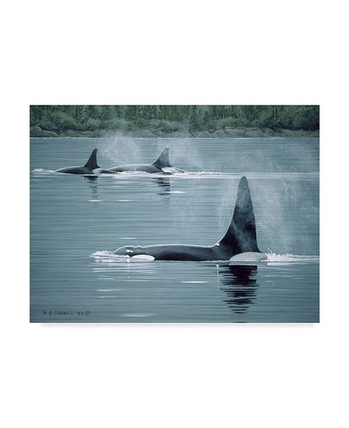 "Trademark Global Ron Parker 'Orcas' Canvas Art - 35"" x 47"""
