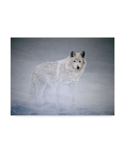 "Trademark Global Ron Parker 'Arctic Winds' Canvas Art - 35"" x 47"""