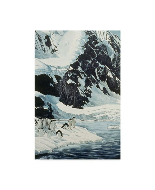 "Trademark Global Ron Parker 'Penguins' Canvas Art - 30"" x 47"""