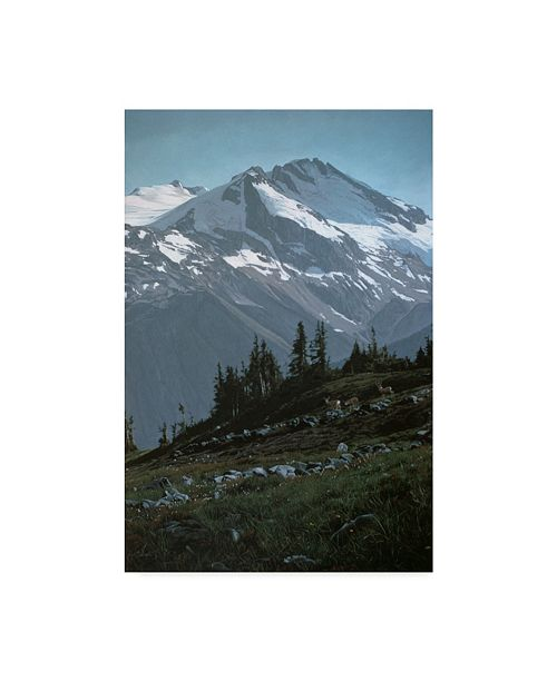"Trademark Global Ron Parker 'The Coast Range' Canvas Art - 30"" x 47"""