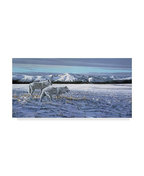"""Trademark Global Ron Parker 'First Snow Arctic Wolves' Canvas Art - 24"""" x 47"""""""
