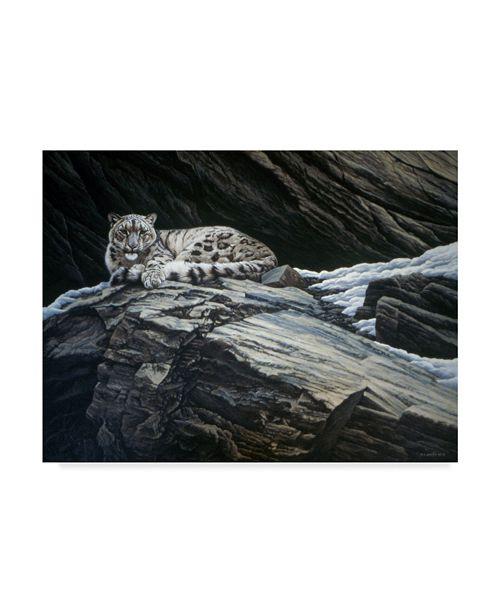 "Trademark Global Ron Parker 'Mountain Monarch' Canvas Art - 24"" x 32"""