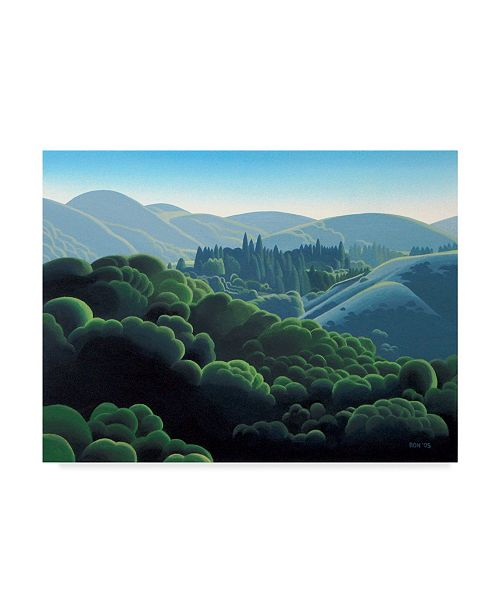 "Trademark Global Ron Parker 'Rolling Hills' Canvas Art - 35"" x 47"""