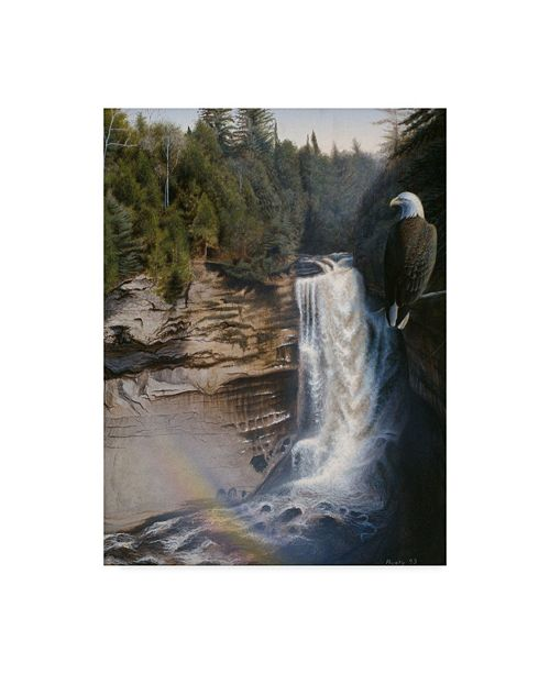 "Trademark Global Rusty Frentner 'Miners Falls' Canvas Art - 35"" x 47"""