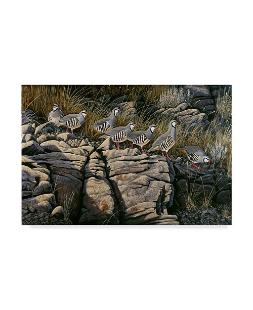 "Trademark Global Wilhelm Goebel 'Rimrock Covey Chukars' Canvas Art - 22"" x 32"""