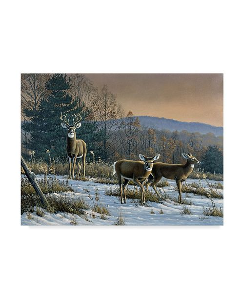 "Trademark Global Wilhelm Goebel 'Prime Time Whitetail Deer' Canvas Art - 35"" x 47"""