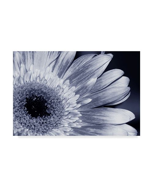 "Trademark Global Incredi 'Silver Mood' Canvas Art - 47"" x 30"""