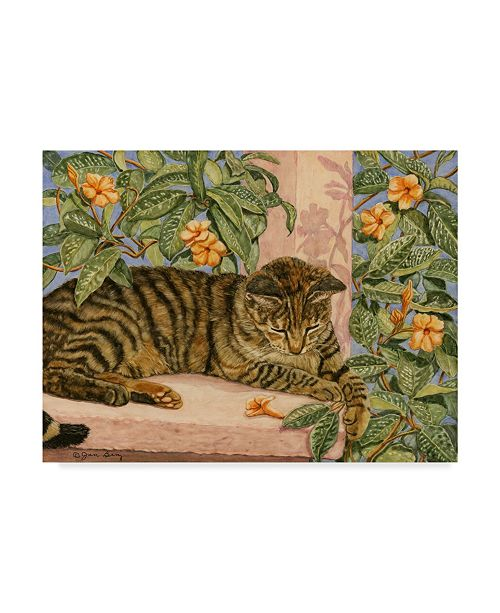 "Trademark Global Jan Benz 'Caribbean Cat' Canvas Art - 32"" x 24"""