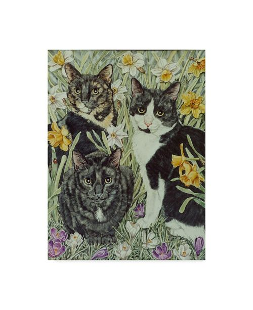 "Trademark Global Jan Benz 'The Trio' Canvas Art - 35"" x 47"""