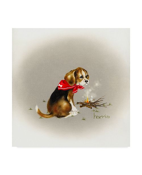 "Trademark Global Peggy Harris 'Beagle Scout' Canvas Art - 35"" x 35"""