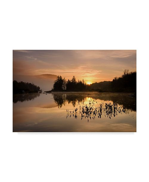 """Trademark Global Michael Blanchette Photography 'Gold On The Mountain' Canvas Art - 32"""" x 22"""""""
