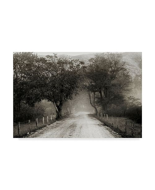 "Trademark Global Nicholas Bell Photography 'Sparks Lane Path' Canvas Art - 24"" x 16"""