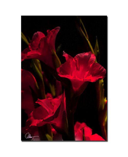 "Trademark Global Martha Guerra 'Gladiolus VII' Canvas Art - 32"" x 22"""