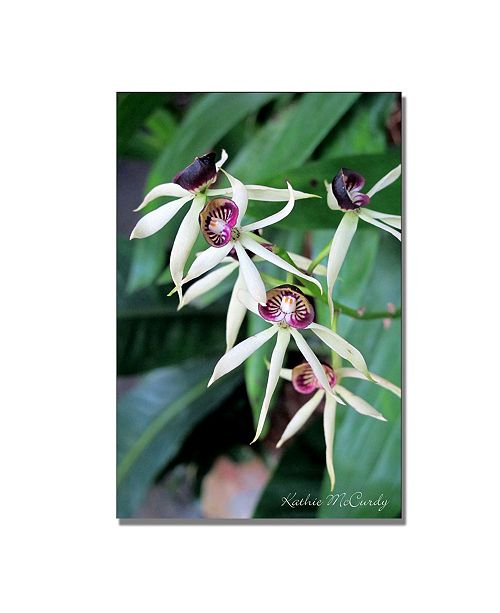 "Trademark Global Kathie McCurdy 'Orchids II' Canvas Art - 24"" x 16"""