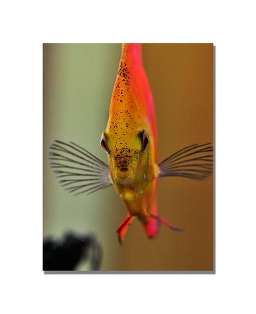 "Trademark Global Kurt Shaffer 'Talking with a Fish' Canvas Art - 47"" x 30"""