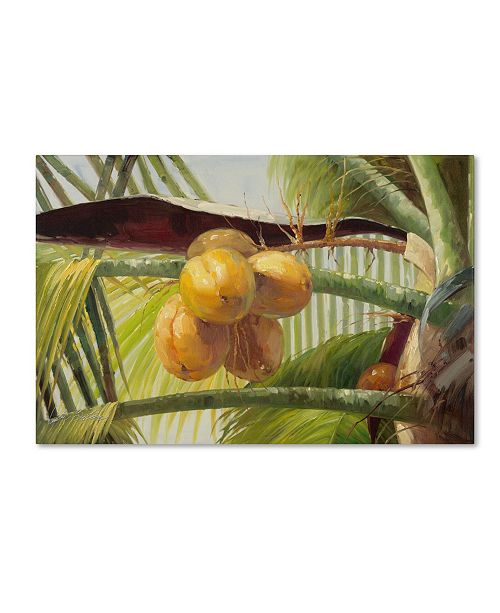 "Trademark Global Victor Giton 'Coconut Palm I' Canvas Art - 24"" x 16"""
