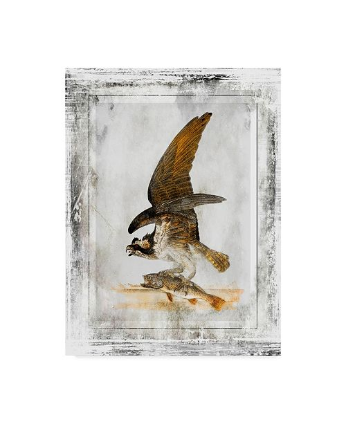 "Trademark Global Jean Plout 'Eagles' Canvas Art - 14"" x 19"""