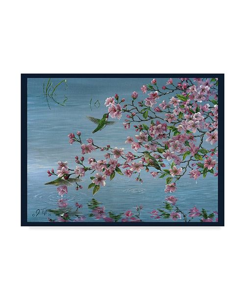 """Trademark Global Jeff Tift 'Broad Tailed Hummer' Canvas Art - 14"""" x 19"""""""