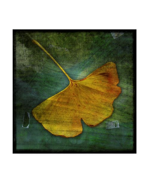 "Trademark Global John W. Golden 'Gingko Green' Canvas Art - 14"" x 14"""