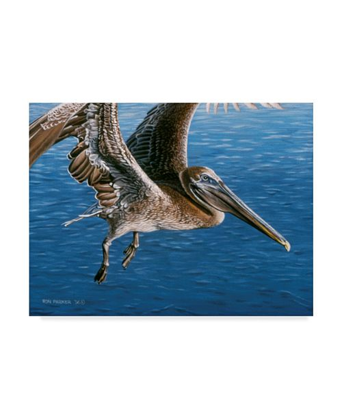 "Trademark Global Ron Parker 'Flying Pelican' Canvas Art - 14"" x 19"""