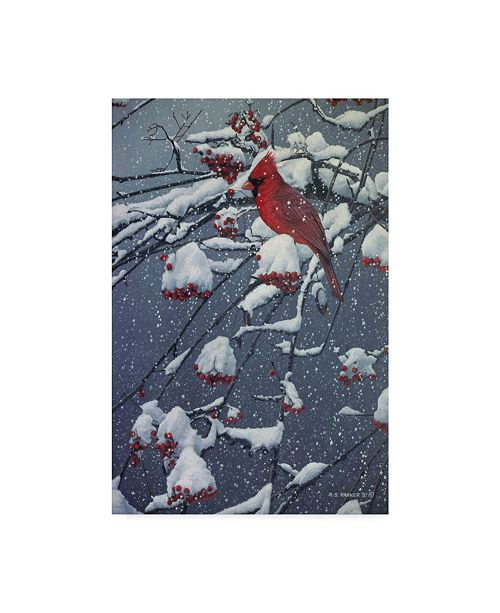 "Trademark Global Ron Parker 'Mountain Ash' Canvas Art - 12"" x 19"""