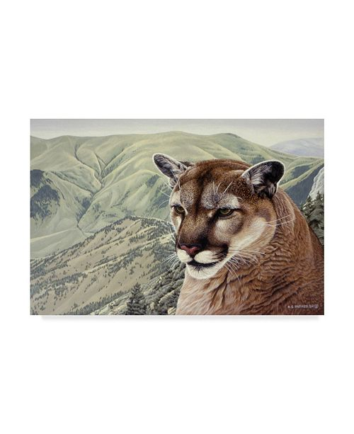 """Trademark Global Ron Parker 'High Country Cougar' Canvas Art - 12"""" x 19"""""""