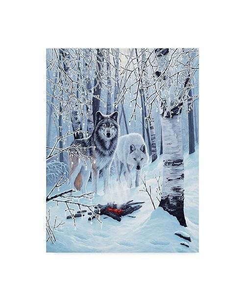 "Trademark Global Ron Parker 'Fire And Ice' Canvas Art - 14"" x 19"""