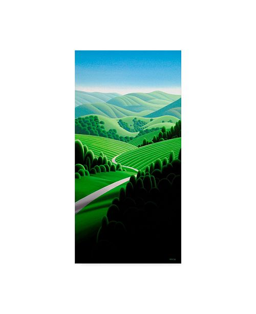 "Trademark Global Ron Parker 'Winding Roads' Canvas Art - 10"" x 19"""