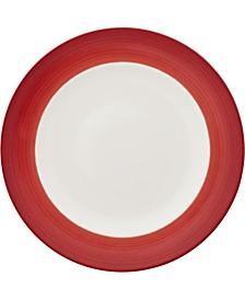 Colorful Life Collection Dinner Plate