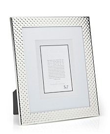 Philip Whitney Silver Scales Frame - 8x10