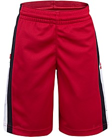 Toddler Boys Rise Colorblocked Shorts