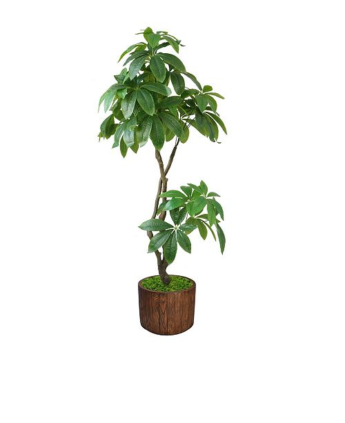 "Laura Ashley 37"" Pachira Aquat Real Touch, Indoor/Outdoor in Fiberstone Planter"