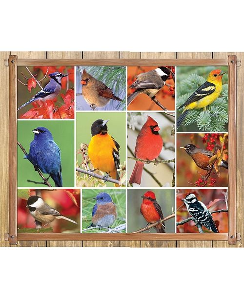 Springbok Puzzles Songbirds 100 Piece Jigsaw Puzzle