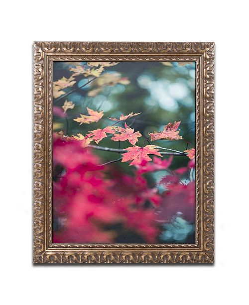 """Trademark Global Jason Shaffer 'Maple' Ornate Framed Art - 16"""" x 20"""""""